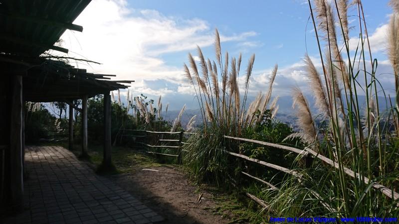 Reserva de fauna andina