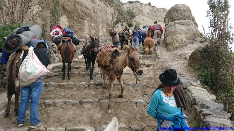 Muchos indígenas se dedican a servicios en áreas turísticas