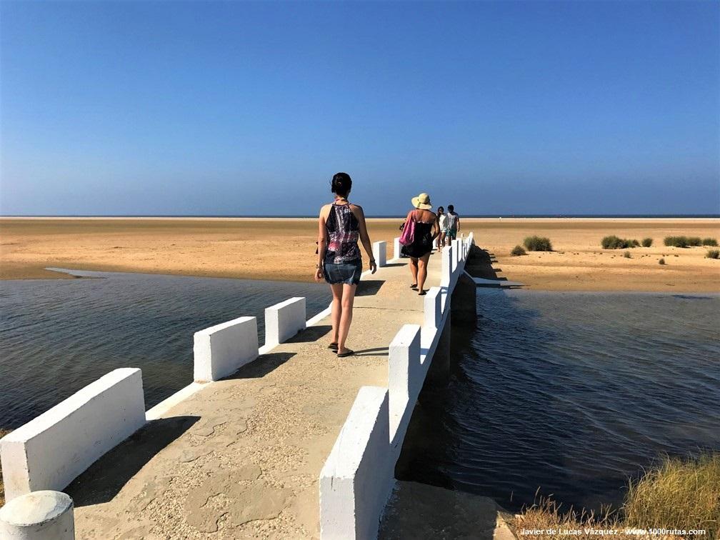 Playa de los Lances, Río Jara