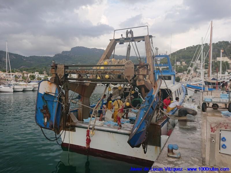 Descargando pescado en el Puerto de Sóller