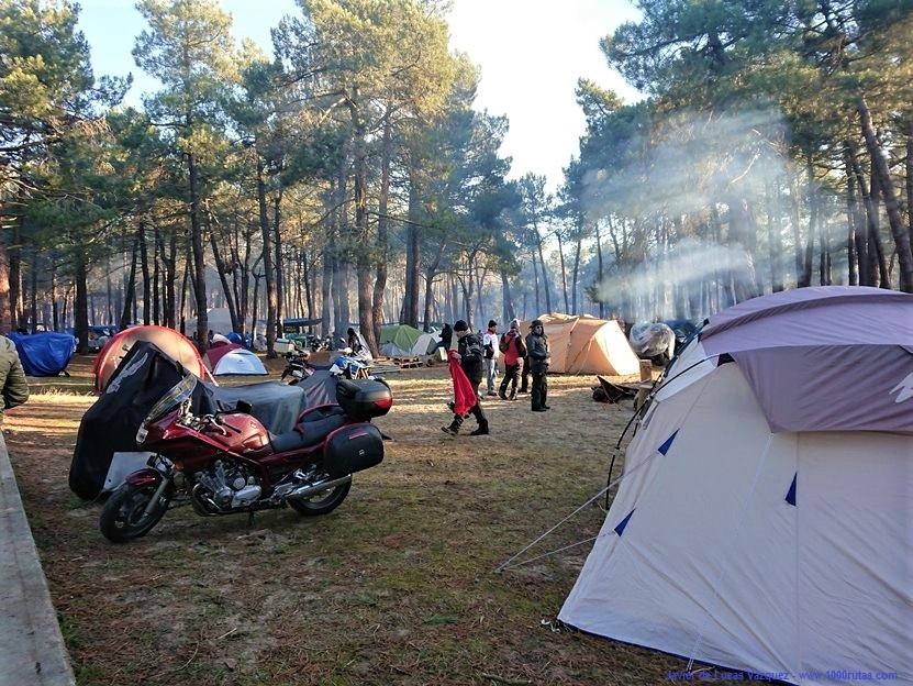 La acampada en el pinar duarante la tarde.