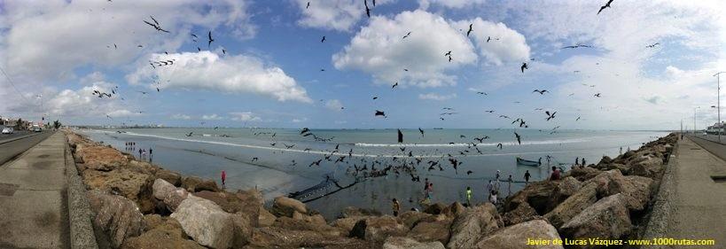 Recogiendo las redes de pesca desde la playa
