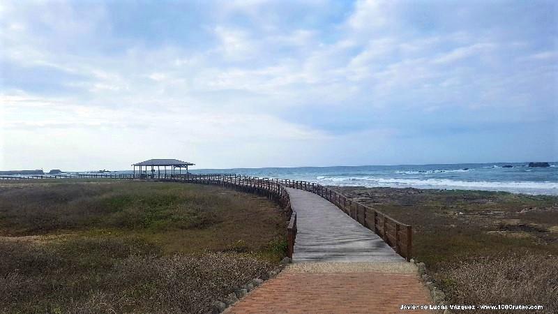 Caminando hacia la Punta Brava
